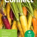 fall-newsletter-cover